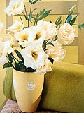 Room Feng Shui With Fresh Flowers