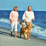 Couple Walking Pet Dog On The Beach